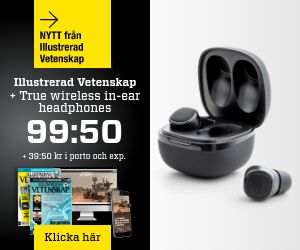 Tidningspremie: Illustrerad Vetenskap + True Wireless in-ear